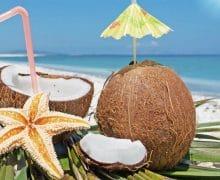 imagen Coco loco: Historia, ingredientes y preparación paso a paso