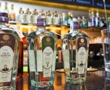imagen Tipos de Ginebras: Gin inglés y Ginebra holandesa