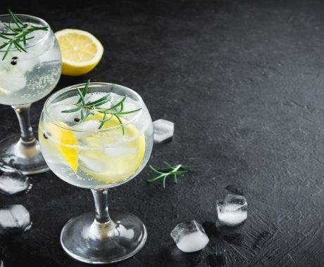 imagen Métodos de elaboración para dar sabor y aroma al Gin