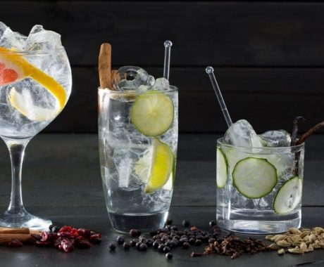 imagen Gin Tonic: Historia, Ingredientes y preparación